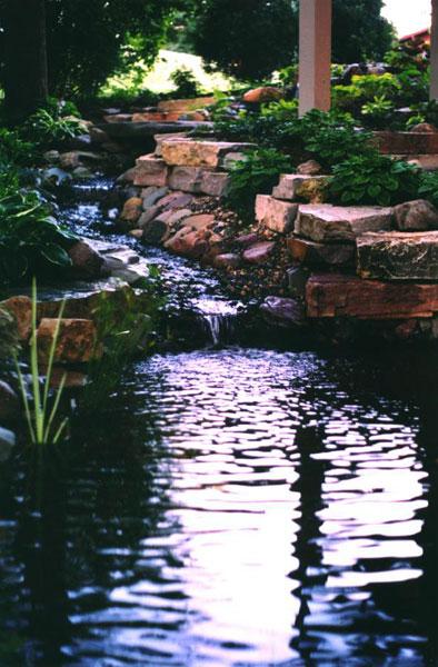 ponds29